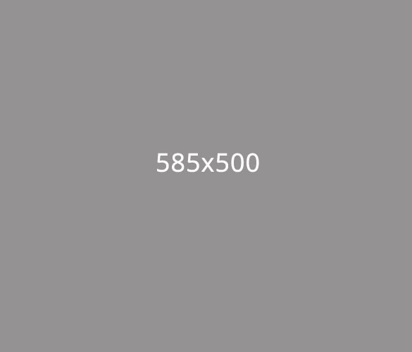 585x500