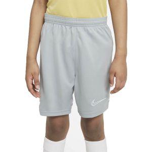 Nike Dri-FIT Academy Boy's Training Shorts CW6109-019