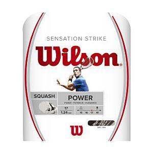 Wilson Sensation Strike Squash String (1.24mm, 10m) WRR943200